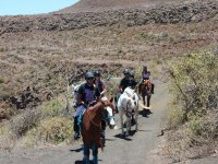 Practicing the horse race in the Canary Islands