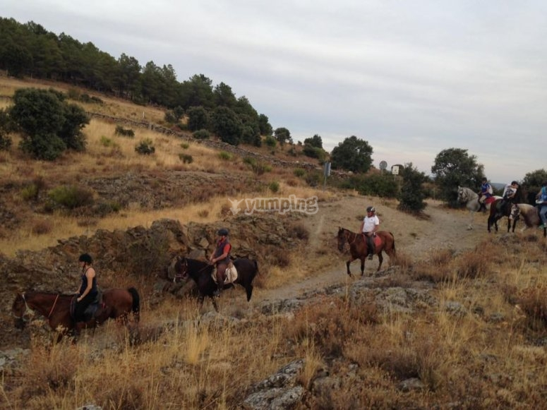 穿过Somosierra的骑马