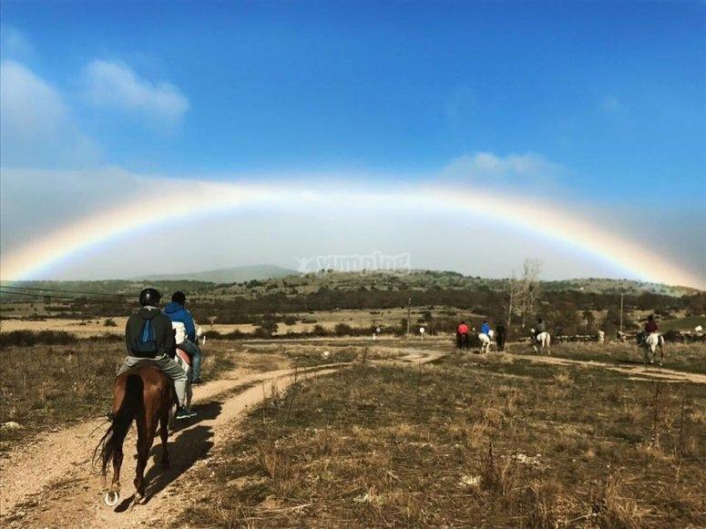 骑马的彩虹
