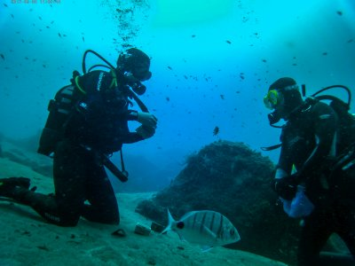 Guided diving immersion in Puerto del Carmen 4h