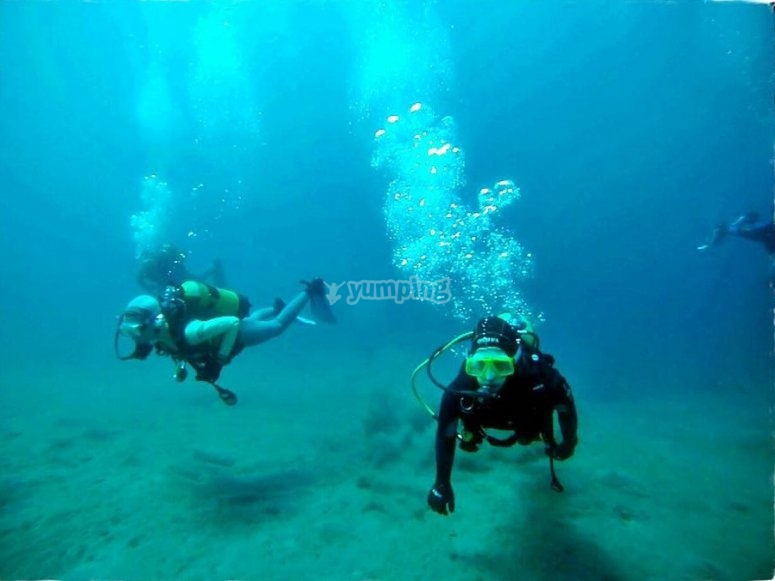 阿雷西费(Arrecife)潜水知识-阿雷西费(Arecife)开放水域潜水员
