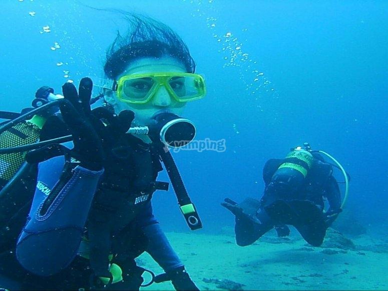 特内里费(Tenerife)潜水课程