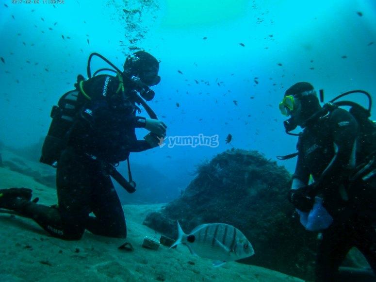 潜水员坐在海底