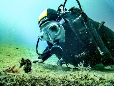 Curso de buceo Open Water Diver en Arrecife