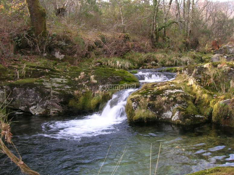 Natural site of the Cerves River