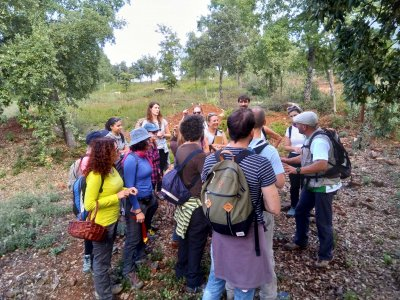 Mycological route in Sierra de Aracena 11 hours