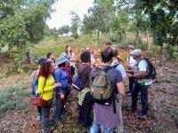 Experiencia micológica en Sierra de Aracena