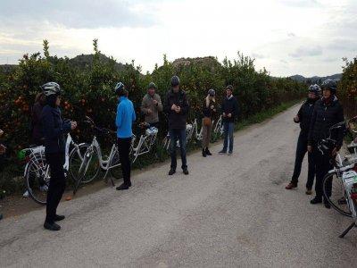 Alquiler bicicleta de montaña en Benidorm 1/2 día