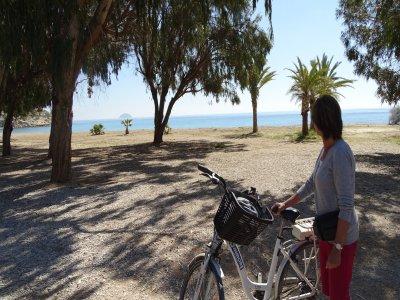 Alquiler bicicleta eléctrica medio día en Benidorm
