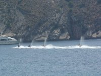 洞穴旅游团摩托艇