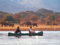在坦桑尼亚