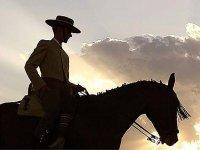 Descubre el caballo