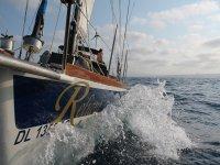 我们的帆船Reliant
