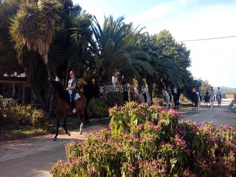 Ruta a caballo por valle de Castellón