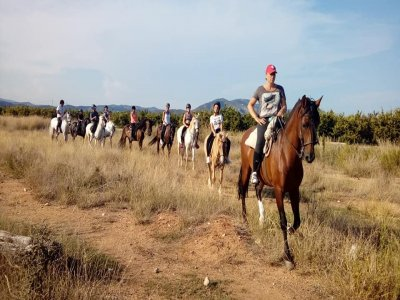 Excursión a caballo por el campo Alcóceber 1h
