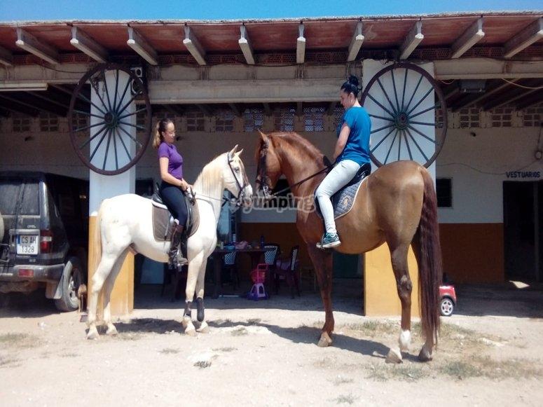 Paseo a caballo desde finca en Alcocéber