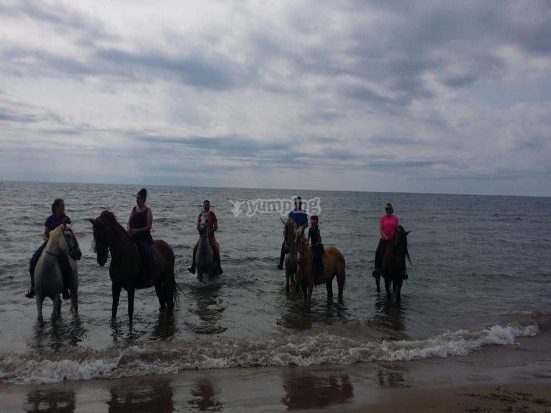 Salida a caballo por playa de Alcocéber