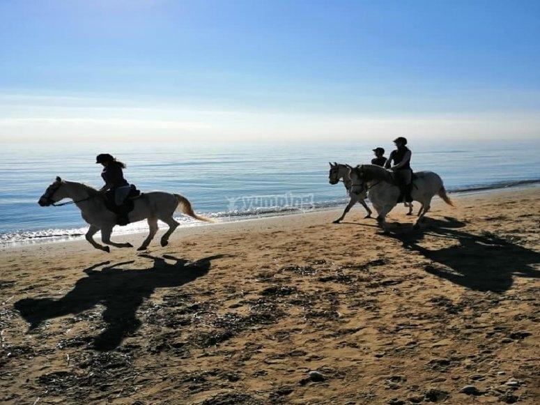 Cabalgando por playa de Alcocéber