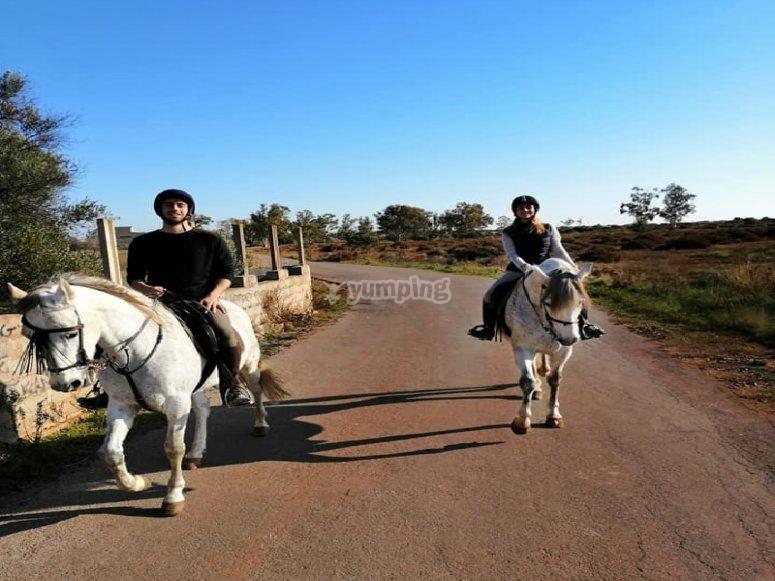 Paseo a caballo durante 3 horas en Castellón