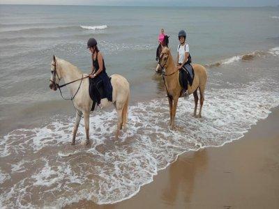 Excursión a caballo por la playa Alcocéber 3 horas