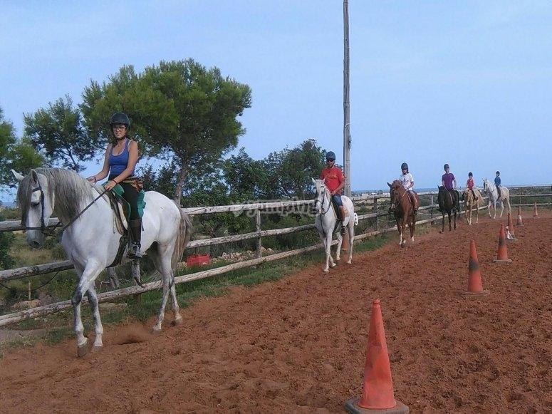 在 Alcocéber 学习骑马