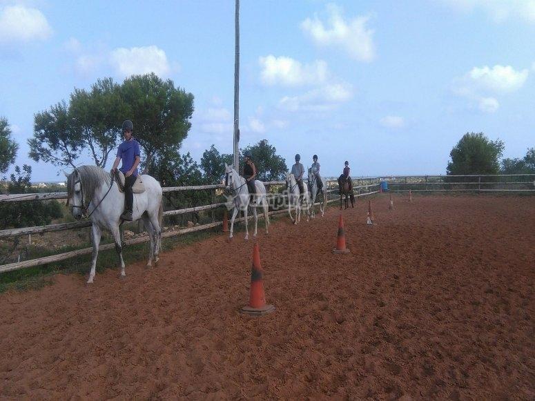 骑马Alcocéber