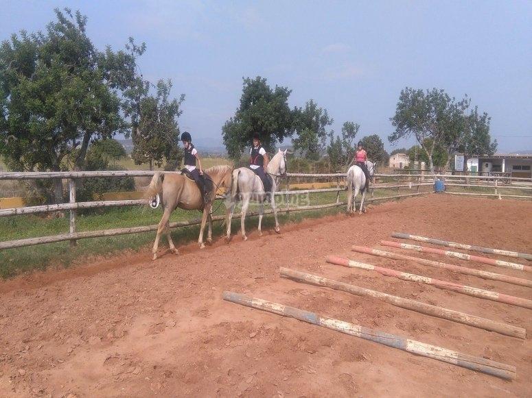 Alcocéber 骑马场