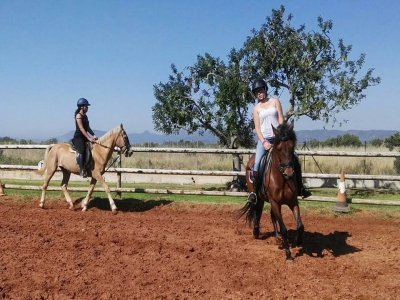 Horse riding class in Alcocéber 1 hour