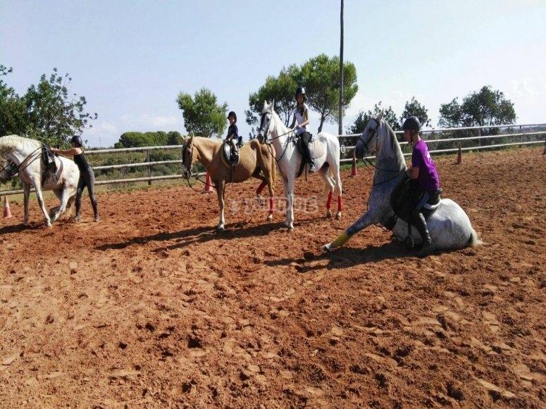 阿尔科塞贝尔的骑术教练