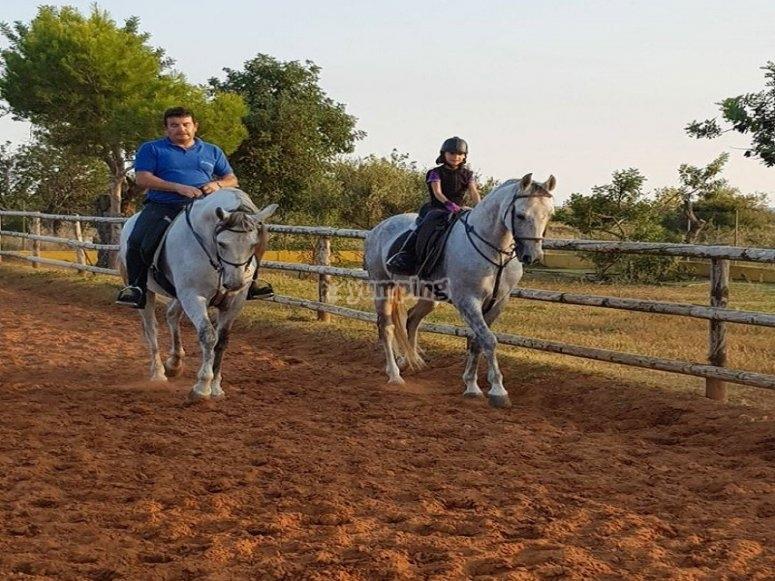 阿尔科塞贝尔的 10 节骑马课程