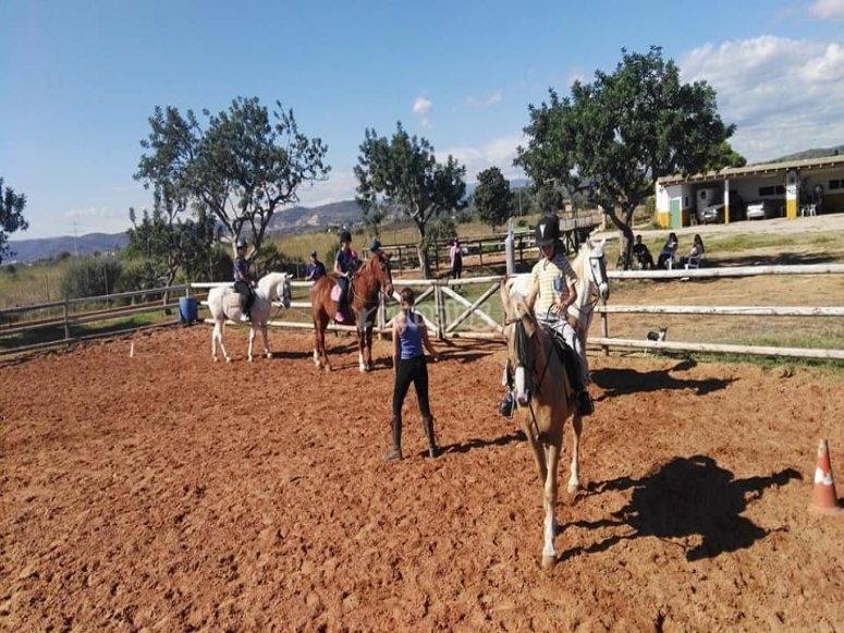 在 Castellón 学习骑马