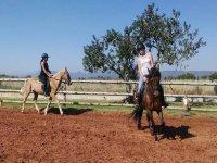 Bono 10 clases de equitación en Alcocéber