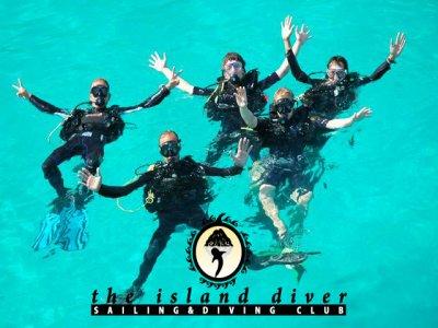 The Island Diver