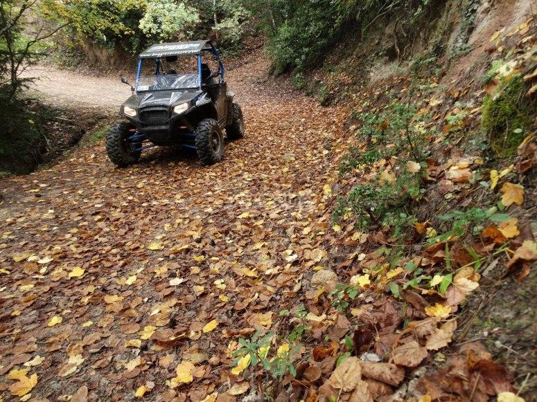 Conducir buggy en la Comarca de Anoia
