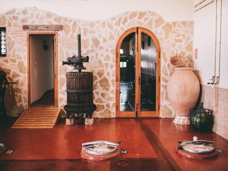 Cuenca wine tourism experience