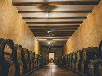 Guided tour of the Villagarcía del Llano winery