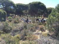 Ragazze che cavalcano cavalli tra gli alberi