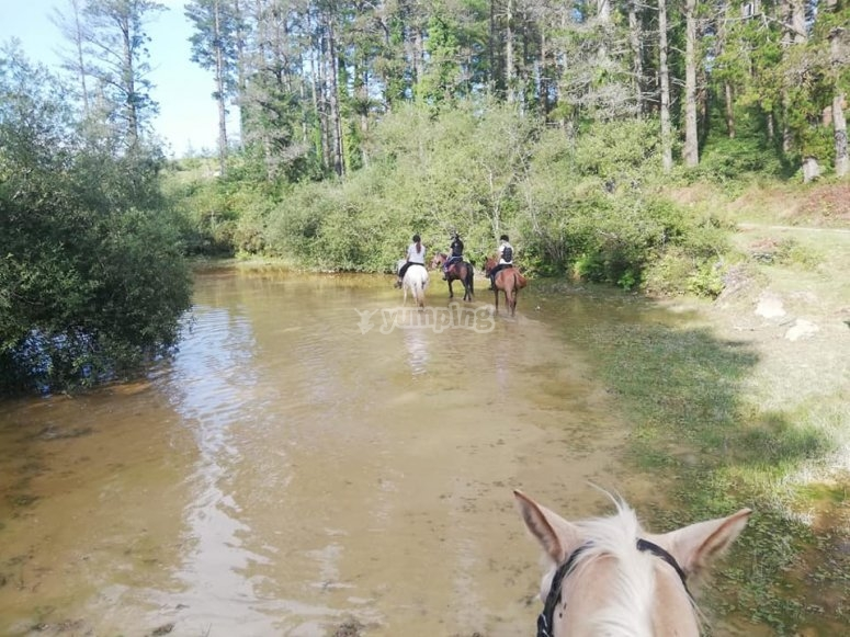 Horse riding along the river in Lastur