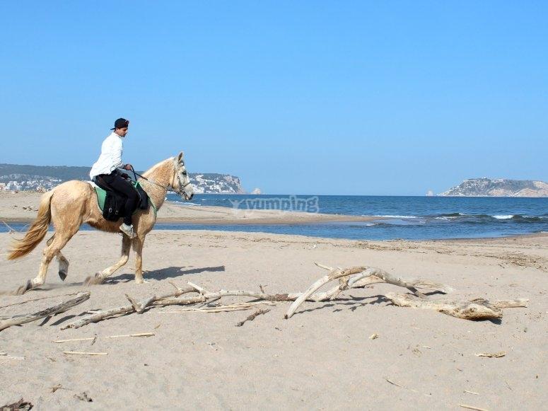 Escursioni a cavallo a Llabia