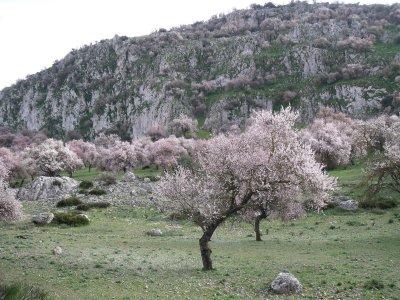 Hiking trail from Gilena to Estepa 10 hours