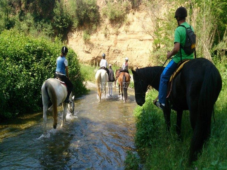 骑马沿着特多拉河