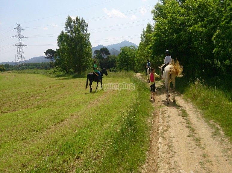 穿过圣玛丽亚-帕劳特德拉-999的土路-穿越圣玛丽亚-帕劳特德拉的游览