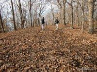 在秋天徒步旅行