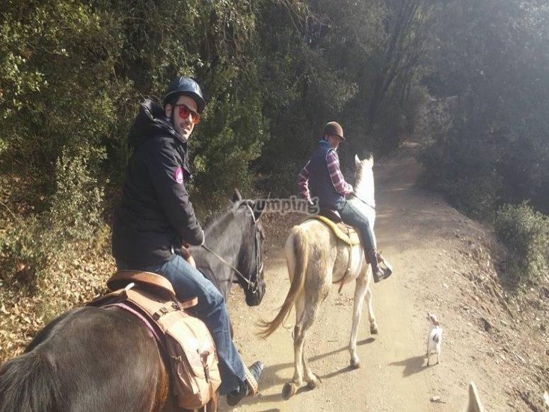 骑马游览Turódel Home
