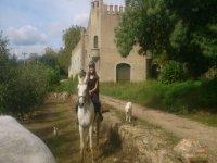 引导骑马路线穿过Montseny