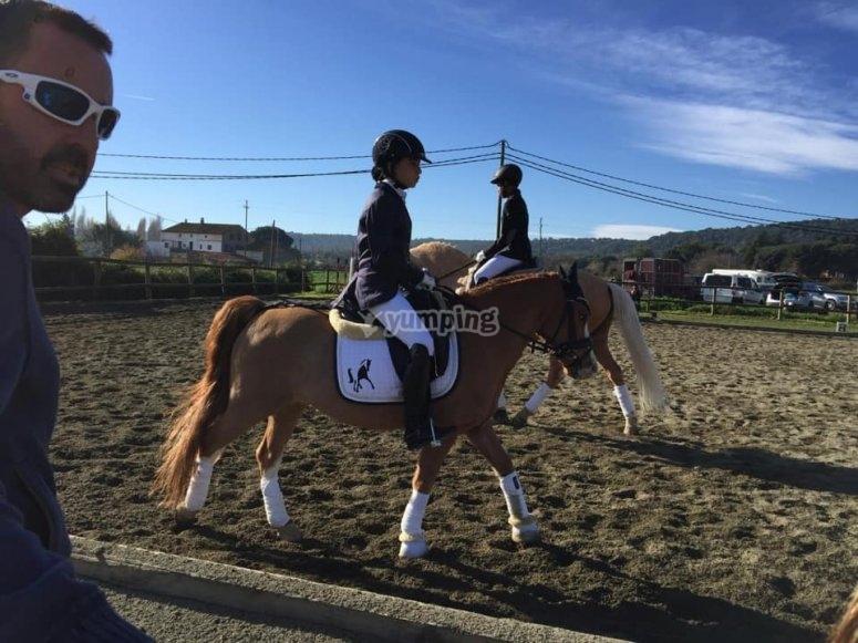 Classe con i pony