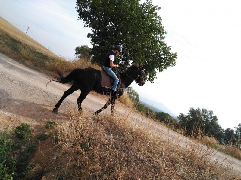 res_o-34697-rutas-a-caballo_de_hector-marin-rodriguez_14785367969302.jpg