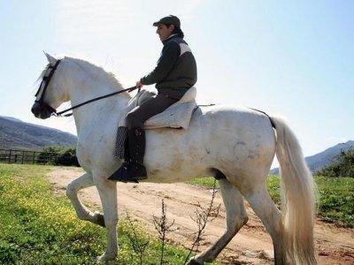 Marazul Ocio y Aventura Rutas a Caballo