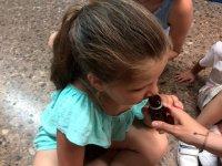 Descubriendo los aromas