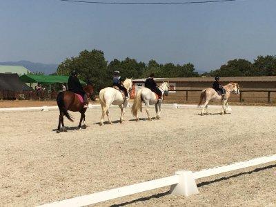 Ruta a caballo por Vidreres 1 hora